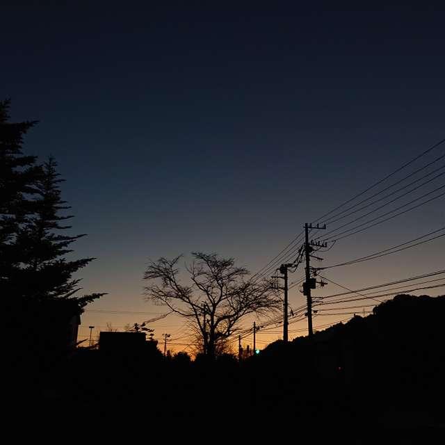 日光の夜明け