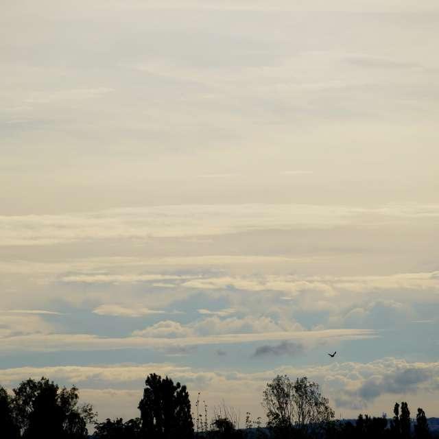 Gentle clouds