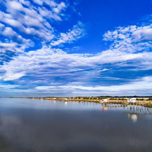 L'estuaire de la Charente