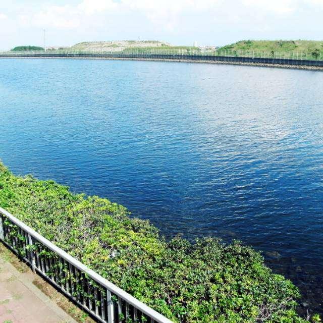 京浜島つばさ公園から運河を眺める。対岸は羽田空港。