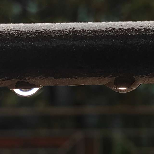 Drops of light🌧️