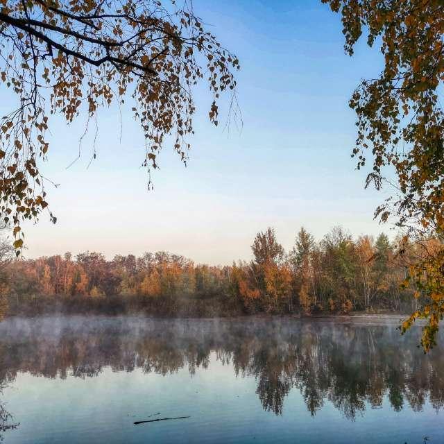 A january morning at the lake