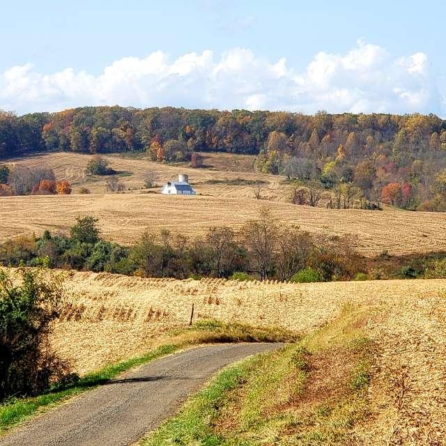 Virginia farmland road