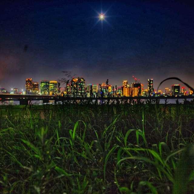 淀川河川敷けら梅田の夜景