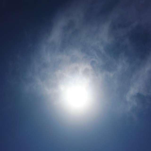 うさぎ太陽
