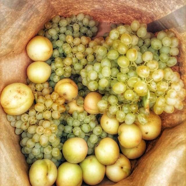 Food Apple fruit