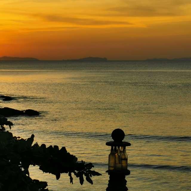 Golden light at sunset