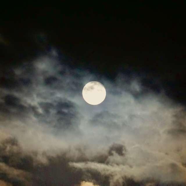 墨絵のような月