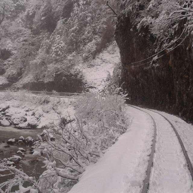 Природа Кубани