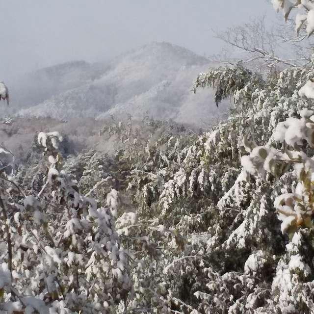 雪の蓬莱山
