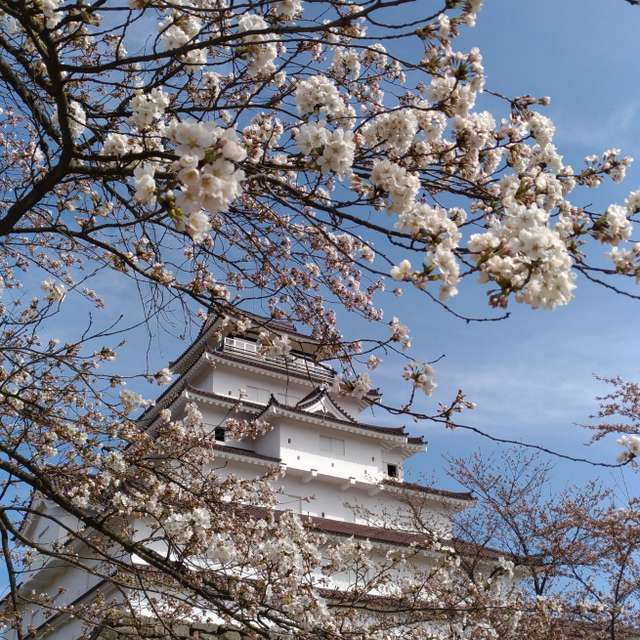 Aizuwakamatu, Fukusima
