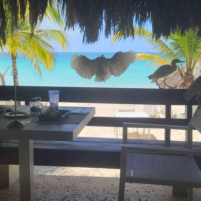 Nagrill Jamaica Cabana