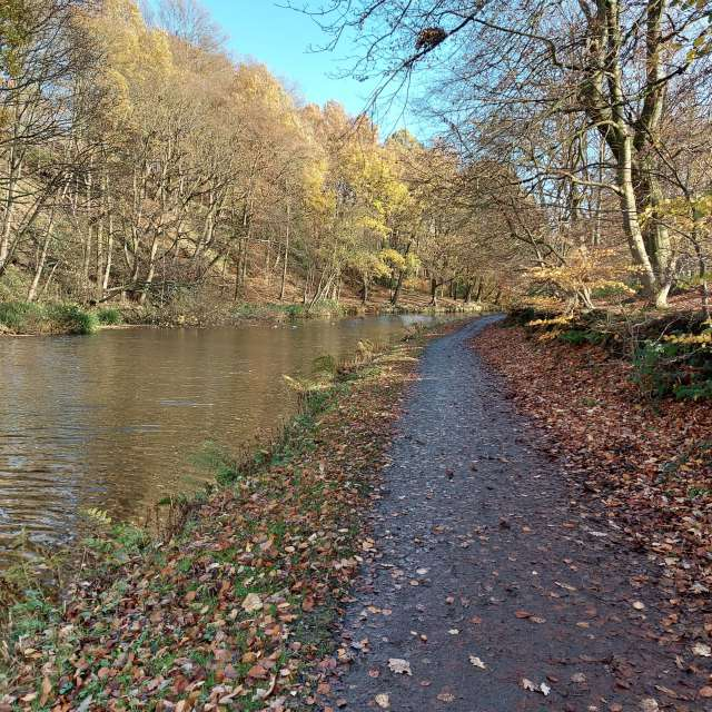 Beautiful Autumn by the canal