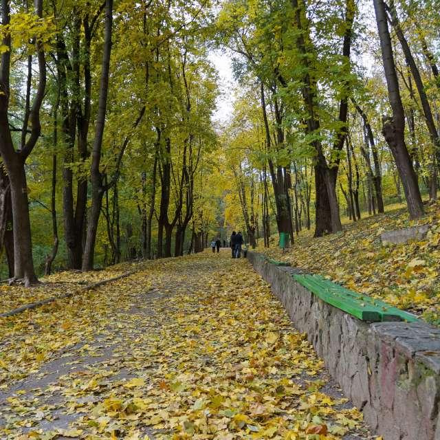Кишинёв, парк