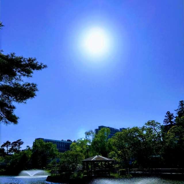 Sti🐤# 公園の噴水に映える太陽