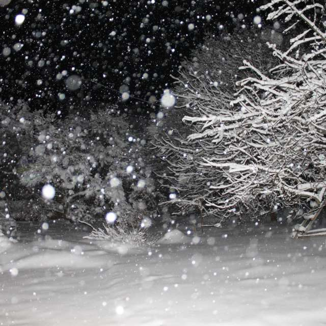 it is snowing in the dark
