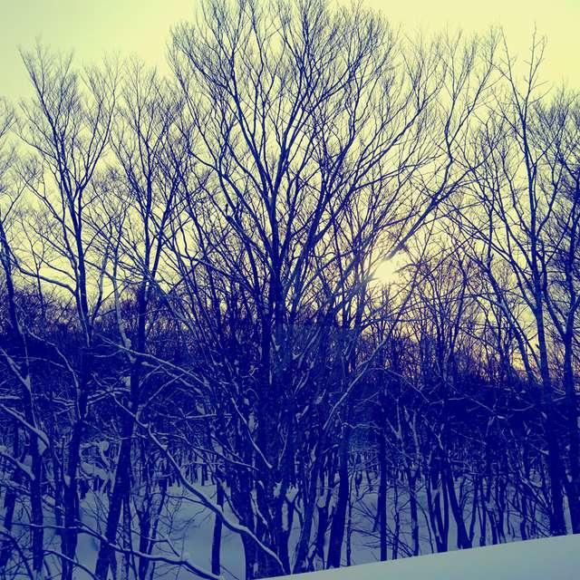 冬の昼下がり