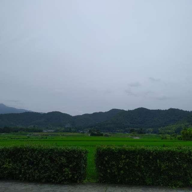 嵯峨の田園風景