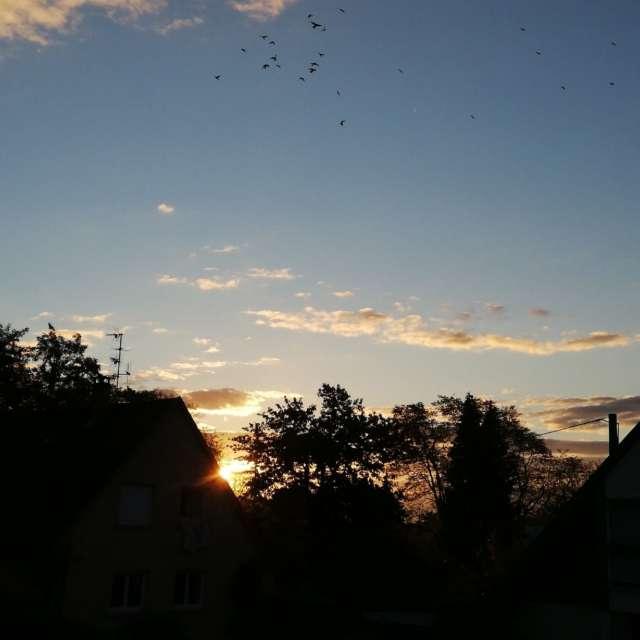 Photos L'eau. Prévisions météo avec de superbes photos de Tiffanie67 de Monde