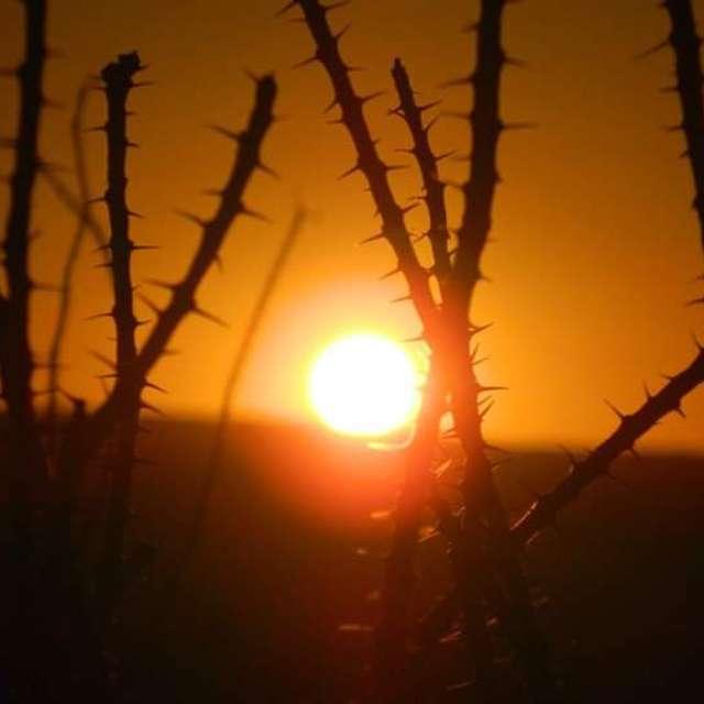 Near Rio Grande River Sunset