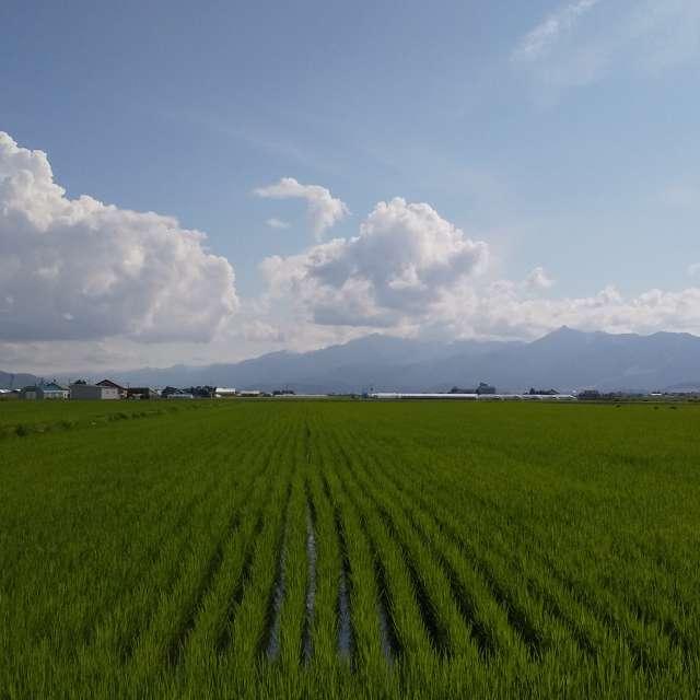 富良野 芦別岳