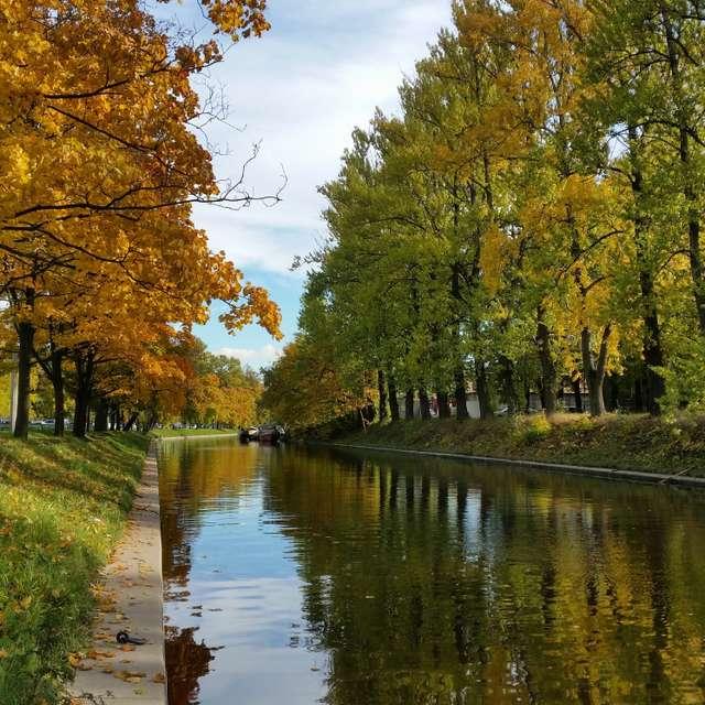 Золотая осень в октябре
