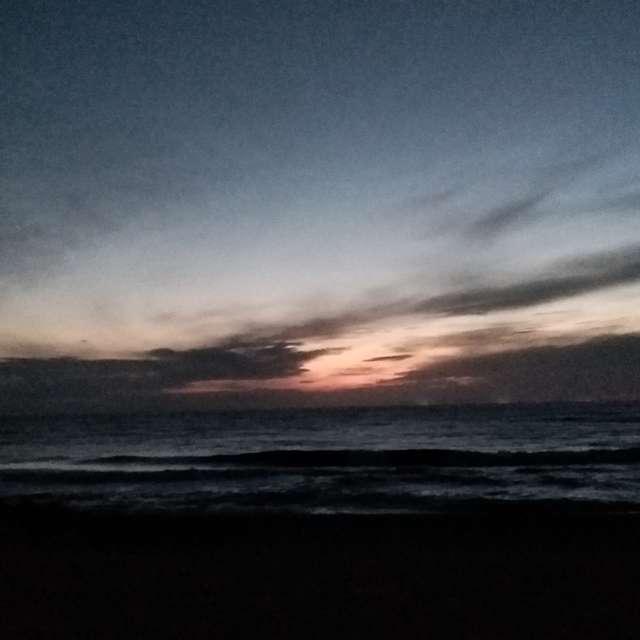 近くの海で