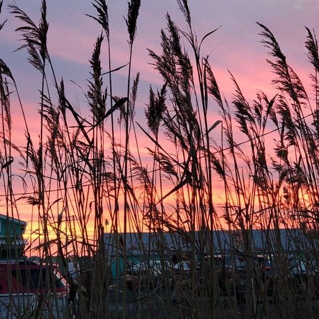 Chesapeake Bay Eastern Shore