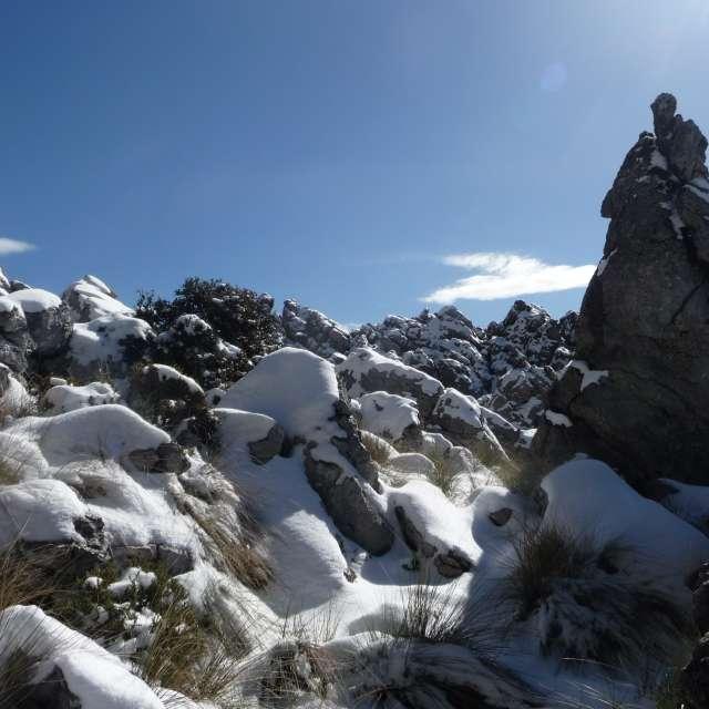 Rocas y nieve