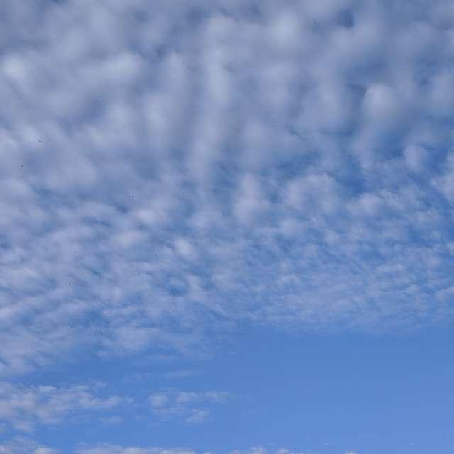 Перьевые облака в городе