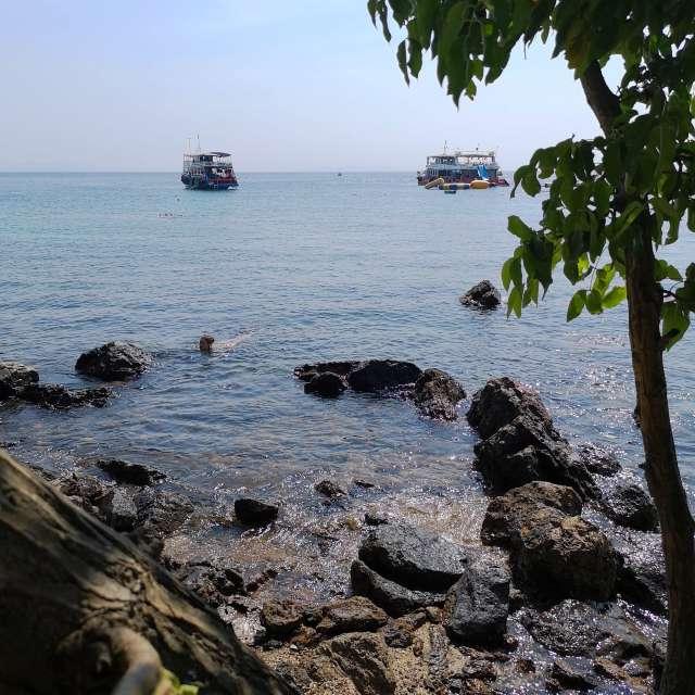 Kohlarn_Monkey Beai - Thailand