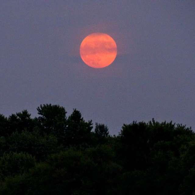 Beautiful Summer Full Moon