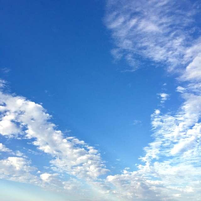 大空を舞う鳥のような雲
