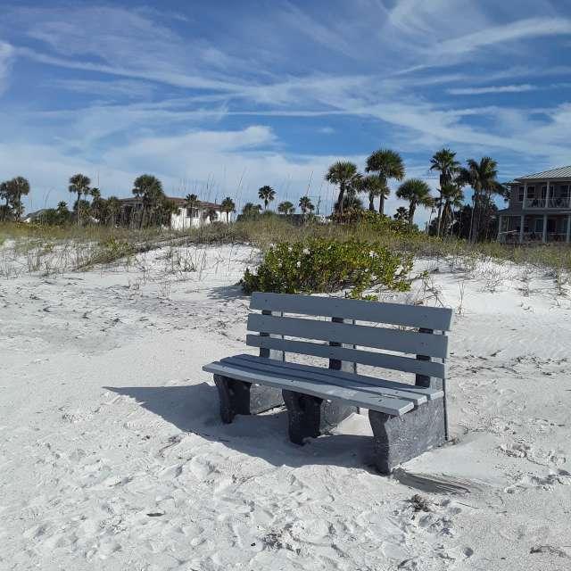 Pass-A-Grille Beach musings...