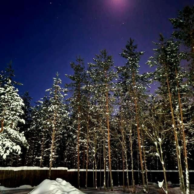 Зимняя ночь...