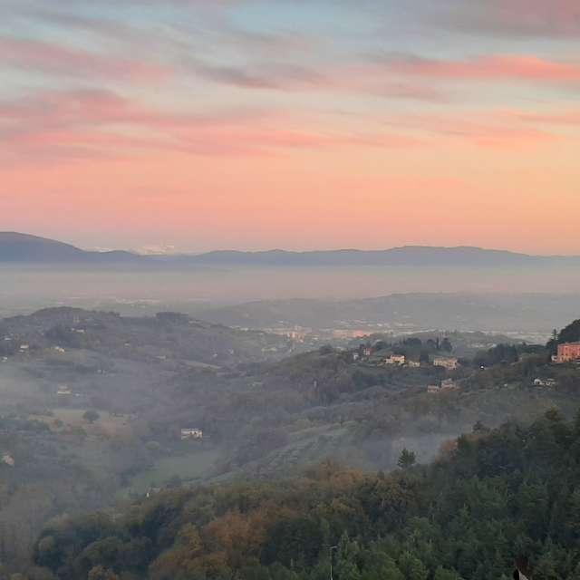 Misty Foggy Sunset