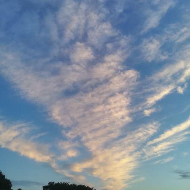 関東平野の朝