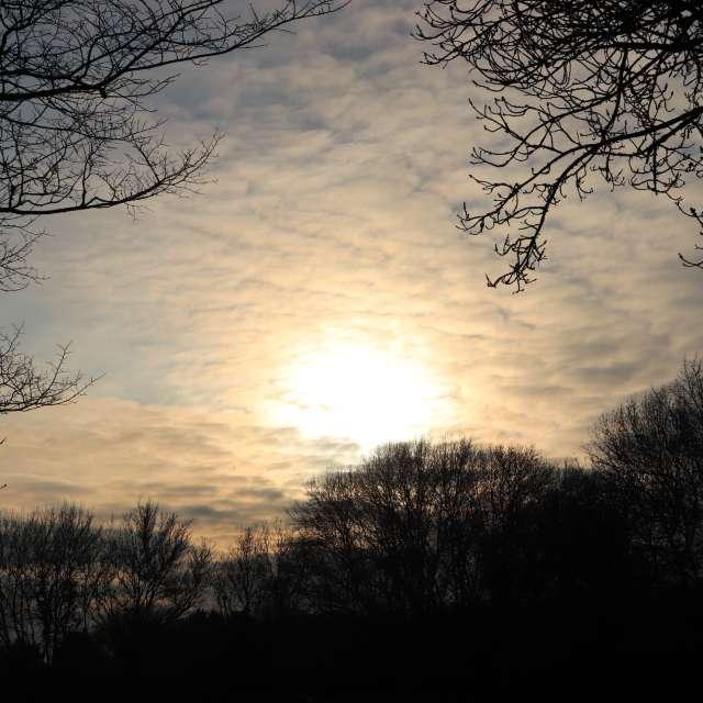 Coucher de soleil en campagne