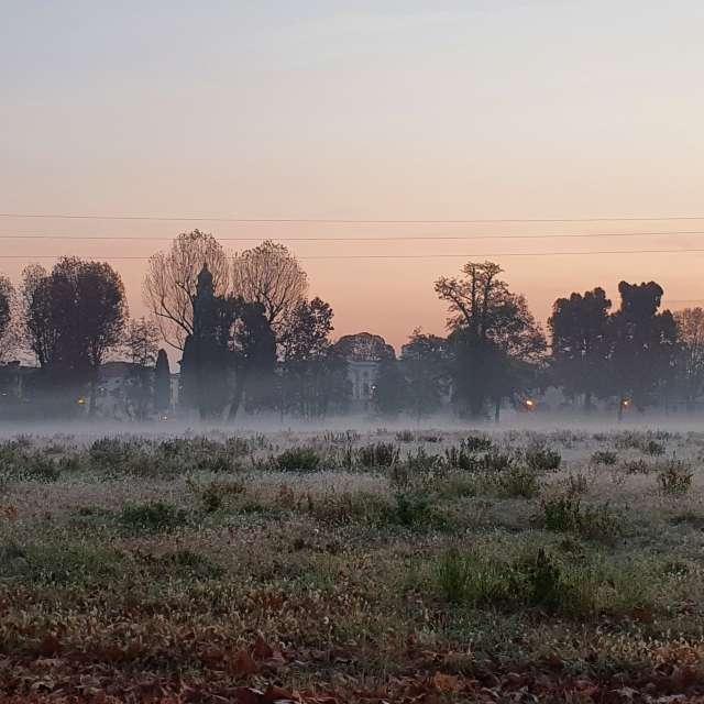 This morning 🥶 Sunrise