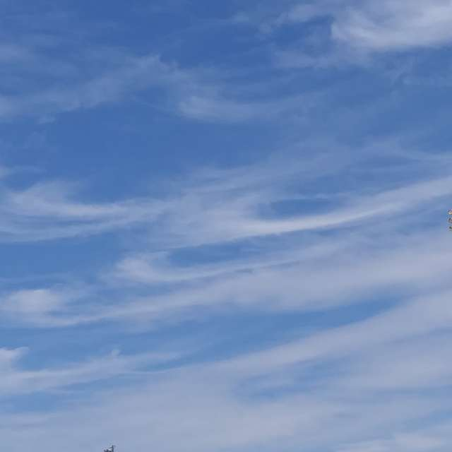 Wispy clouds scattered