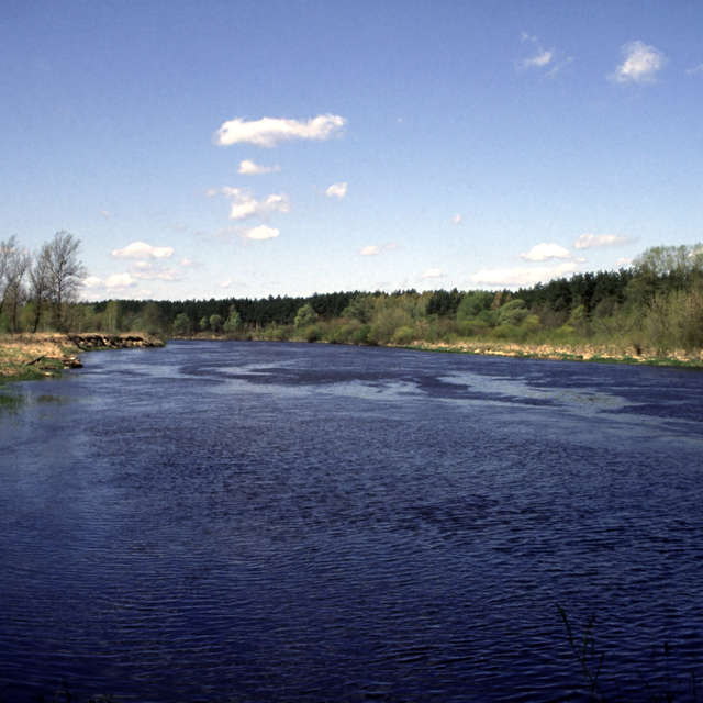 Narew River in Podlasie