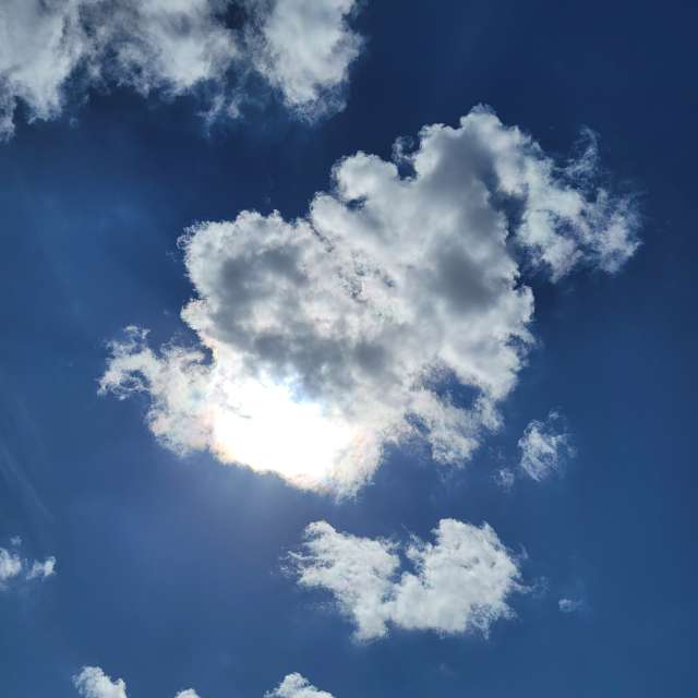 Warm Sunny Day