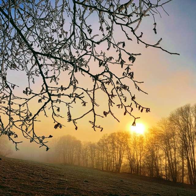 At dawn foggy.