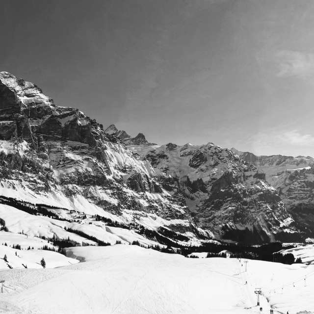 Panorama Grindelwald First