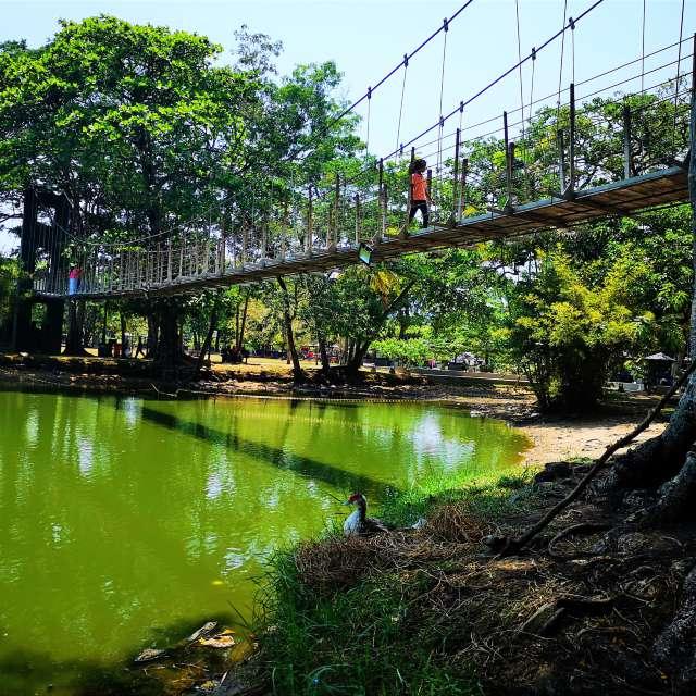 Viharamahadevi Park_Sri Lanka