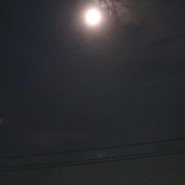 久しぶりの月夜