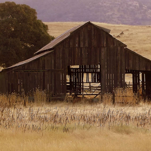 old Barn In Grass Lands