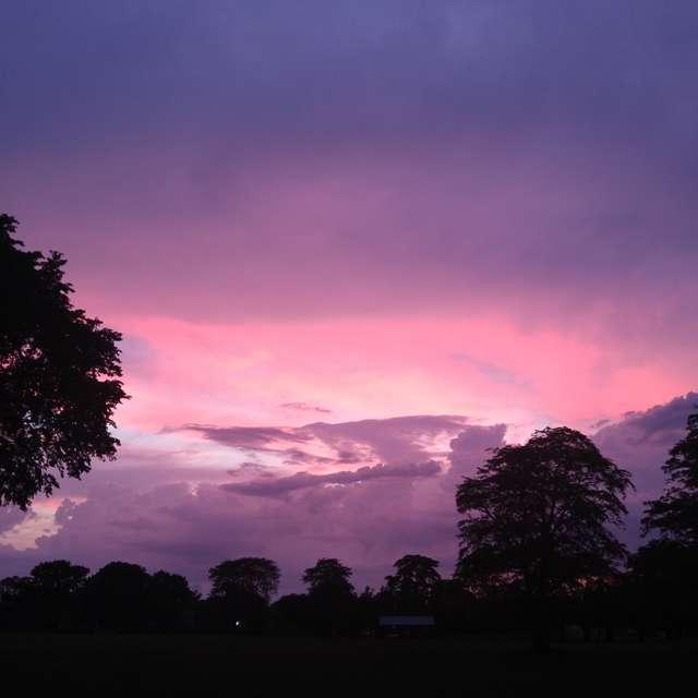 Purple Sky, bright & magical