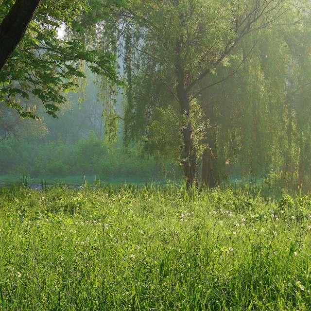 Fotos Andando. Previsões do tempo com lindas fotos de Михаил Гавриков em Mundo