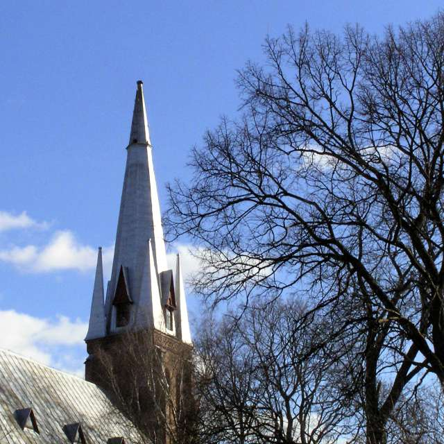 Blue sky, spire and tree